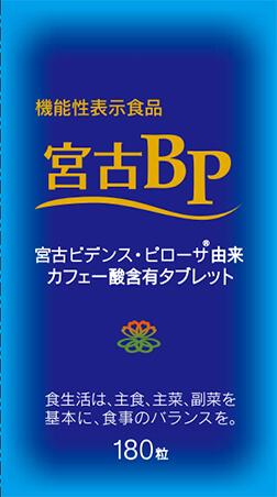 宮古BP(ビーピー)