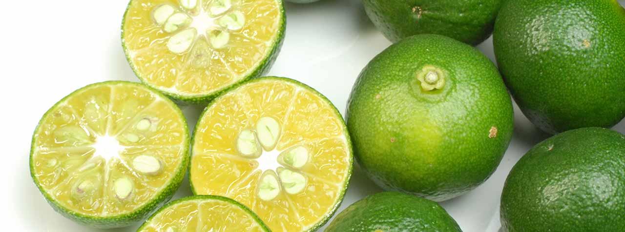 株式会社アスナロ化工研究所の原料シークヮーサー果汁粉末、商品名シークヮーサー果汁粉末AS