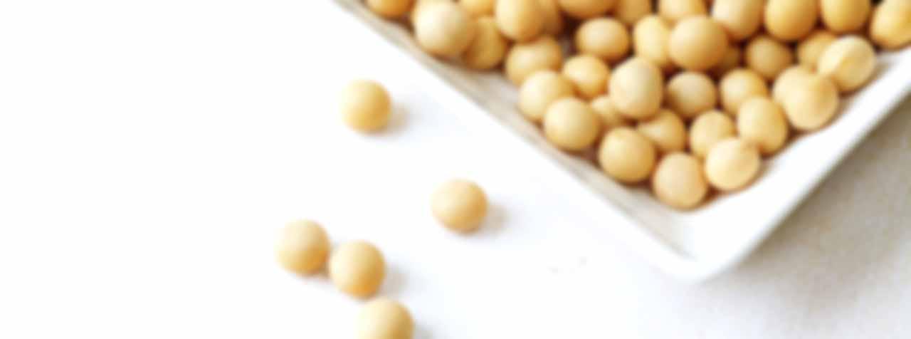株式会社FAPジャパンの原料大豆サポニン、商品名大豆サポニン(80)