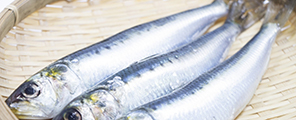 株式会社中原の原料EPA含有精製魚油、商品名EPAオイル(28)