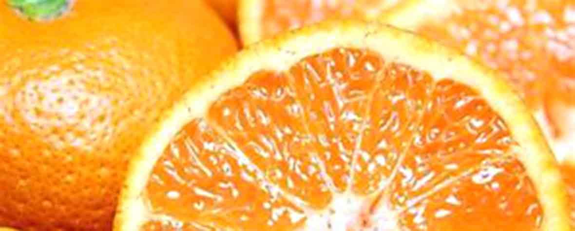 株式会社マツモト交商の原料うんしゅうみかん加工食品、商品名β-クリプトキサンチン
