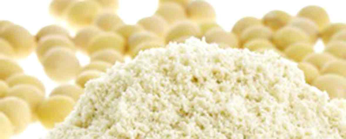 株式会社マツモト交商の原料環状リゾホスファチジン酸ナトリウム、商品名NcPA®10P