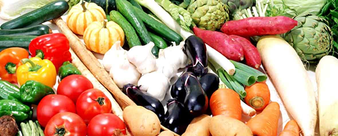 バイオアイ株式会社の原料植物発酵エキス、商品名バイオフローラFD末#32