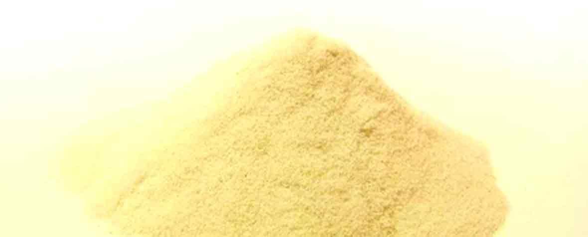 株式会社サビンサジャパンコーポレーションの原料有胞子性乳酸菌、コロハ種子エキス、商品名ラクトワイズ