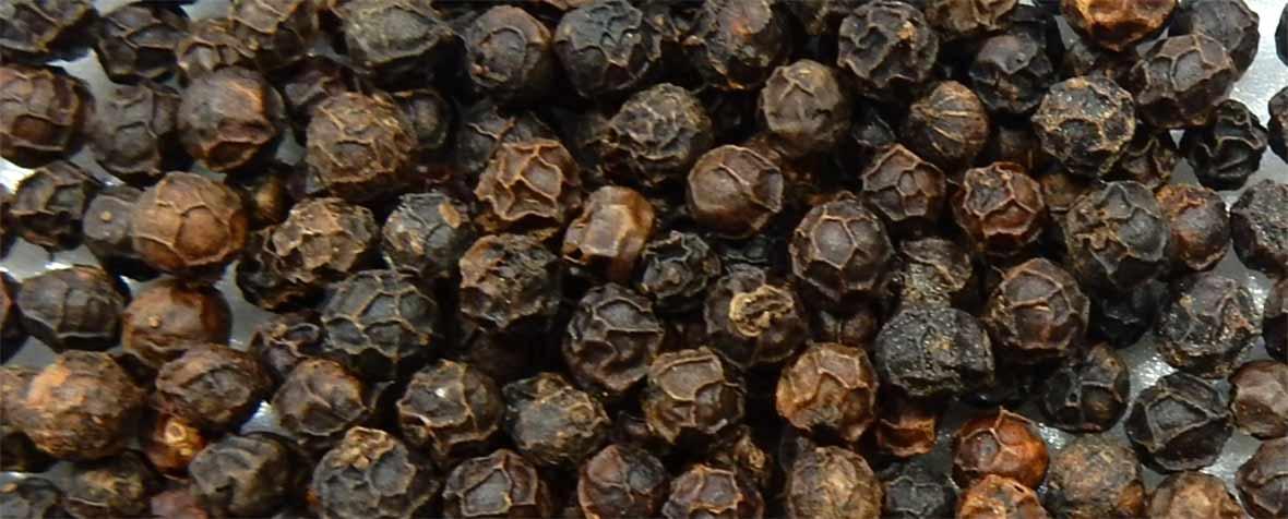株式会社GOA Internationalの原料ブラックペッパー抽出粉末
