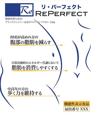 Re(リ)パーフェクト