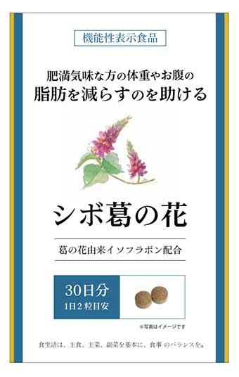 シボ葛の花
