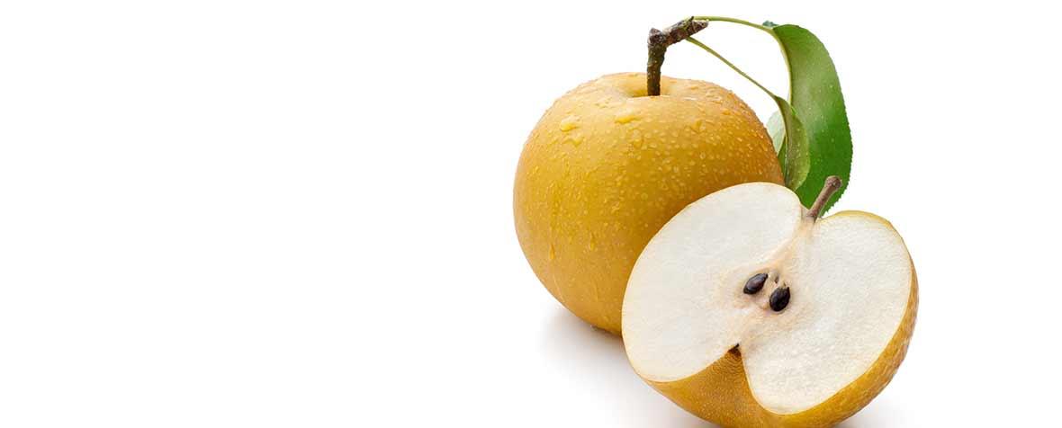 三井製糖株式会社の原料植物乳酸菌(死菌)、商品名乳酸発酵もも果汁SN35N粉末(死菌)