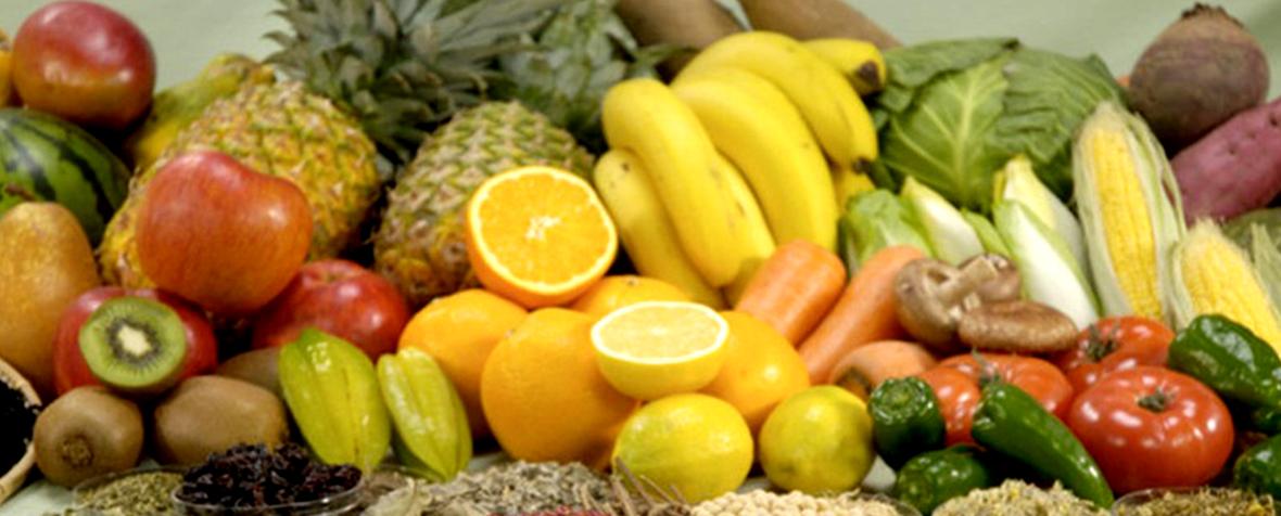 株式会社テルヴィスの原料植物発酵物、商品名ブラジル酵素TR(マスコ処理品)