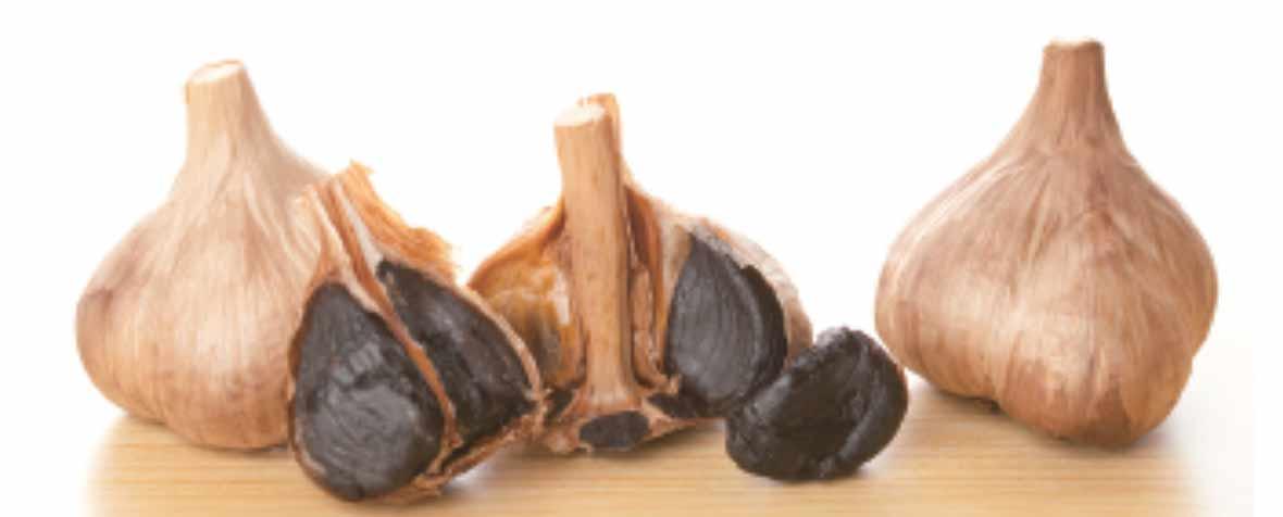 株式会社テルヴィスの原料熟成黒にんにく粉末、商品名熟成黒にんにく粉末TR