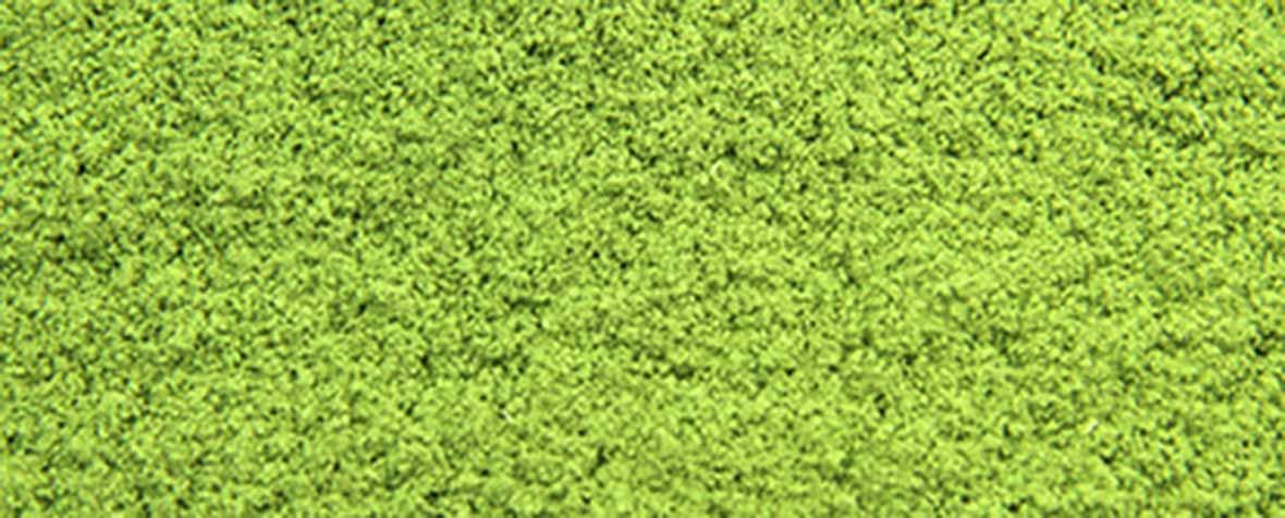 株式会社ニップンの原料有機小麦若葉粉末、商品名有機小麦若葉