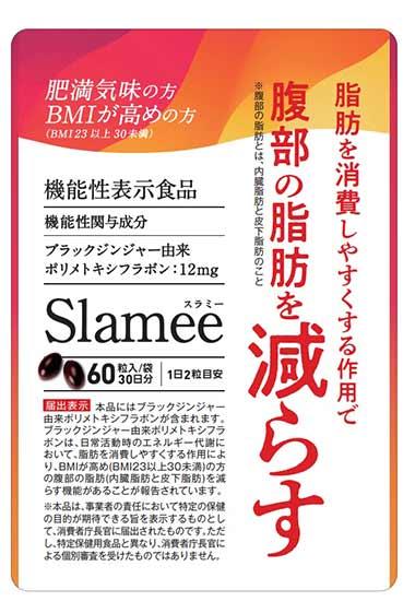 Slamee(スラミー)