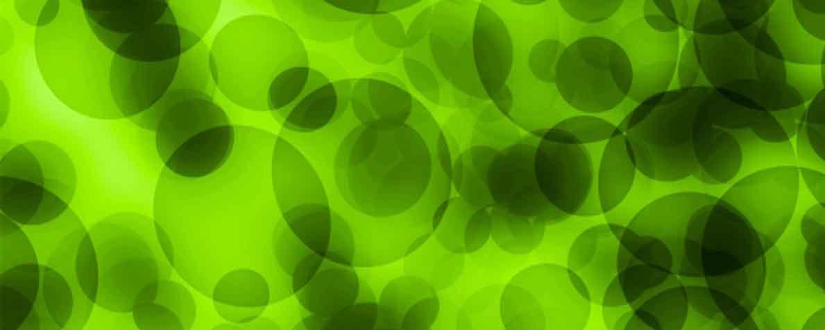 セルマーク・ジャパン株式会社の原料藻由来DHA含有オイル、商品名植物DHA(ドコサヘキサエン酸)40%オイル