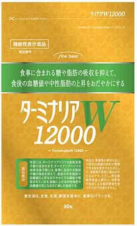 ターミナリアW12000